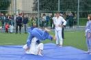 школа борьбы и бокса_31