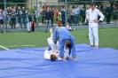 школа борьбы и бокса_39