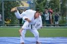 школа борьбы и бокса_7