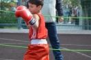 школа борьбы и бокса_118