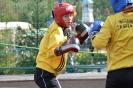школа борьбы и бокса_137