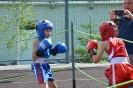школа борьбы и бокса_143