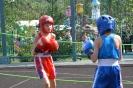 школа борьбы и бокса_148