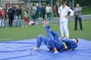 школа борьбы и бокса_14