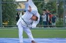 школа борьбы и бокса_8
